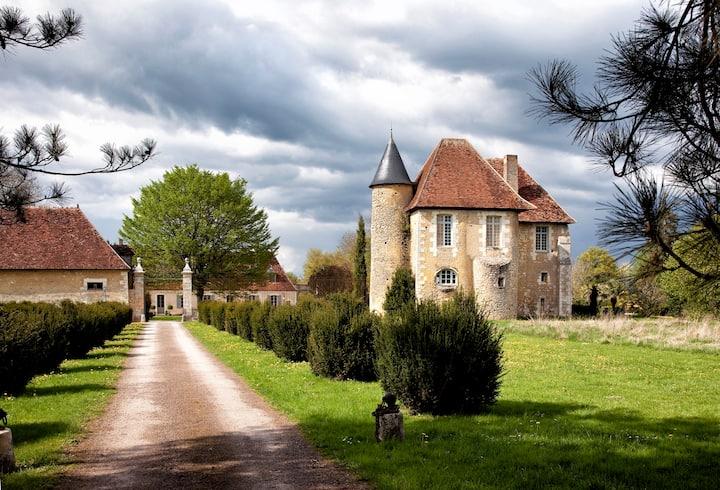 Maison d'hôtes Château de Saint Georges sur Moulon