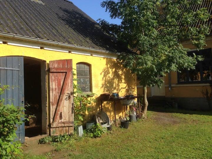 Basnæsgård - 3 dejlige værelser!
