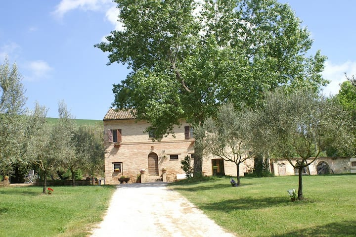 Country house in Marche