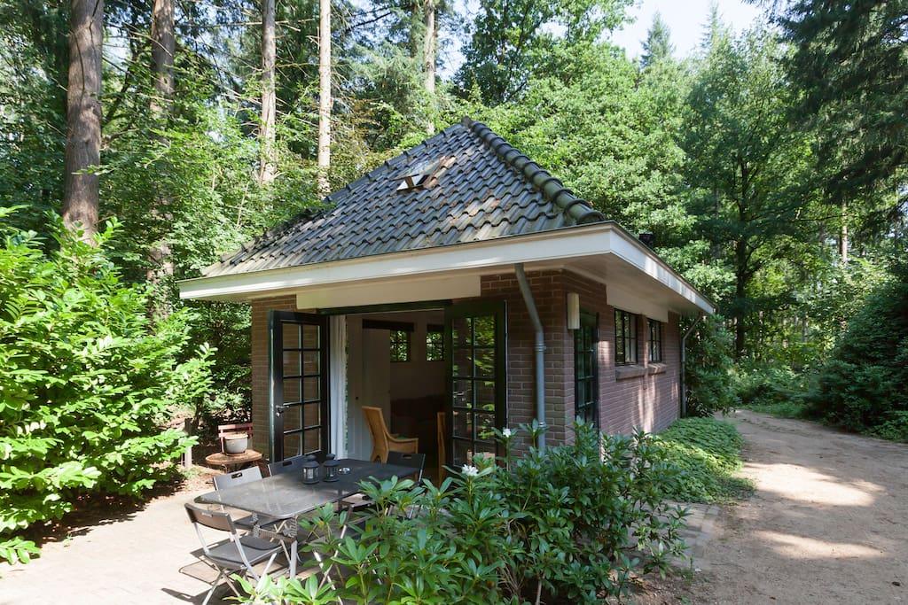 Leuk vakantiehuisje in het bos guesthouses te huur in for Klein huisje in bos te koop