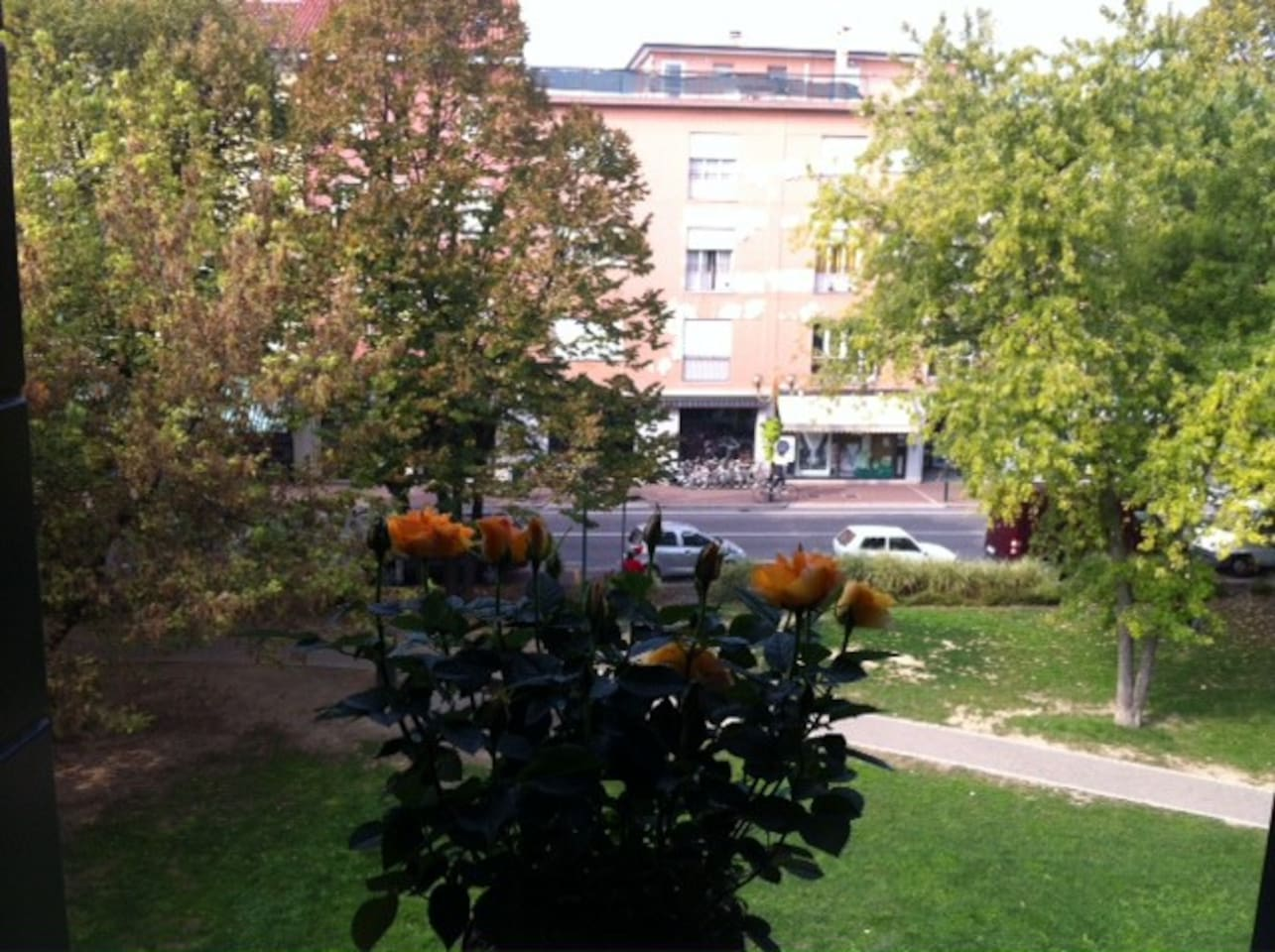 VIEW OF THE PUBBLIC PARK FROM THE KITCHEN WINDOW