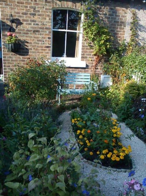Front garden - south facing