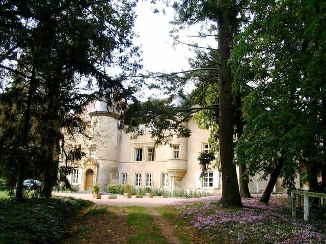 Chateau de La Chambre - Saint-Haon-le-Vieux - Linna
