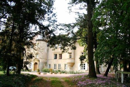 Chateau de La Chambre - Saint-Haon-le-Vieux - Castle