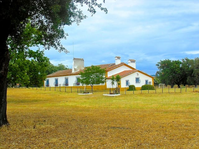 Charming Countryhouse at Alentejo