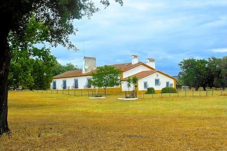 Charming Countryhouse at Alentejo - Portalegre-Gare