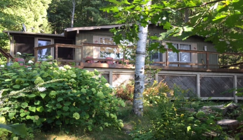 Lake of Bays Classic - Beautiful Big Lake View - ON - Cabane