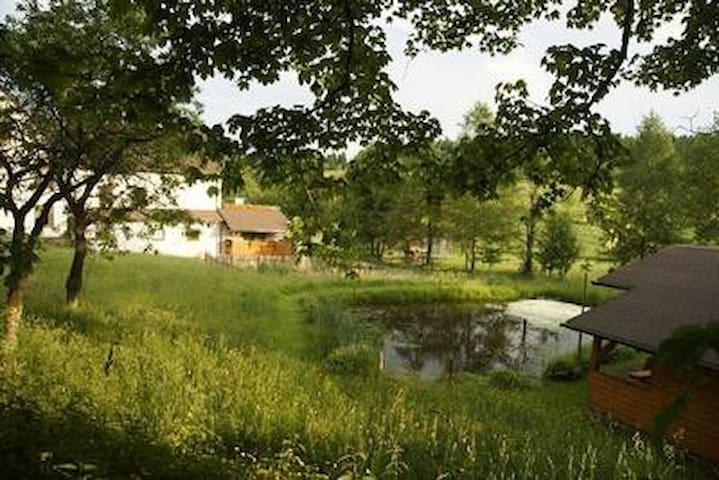Ferienwohnung Wiesengrund Siegmundsburg