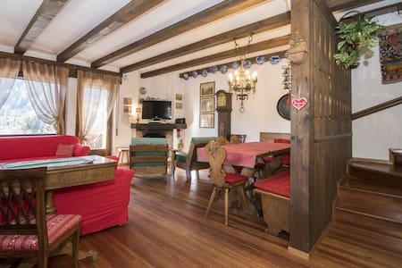 Grande appartamento caratteristico vista Dolomiti