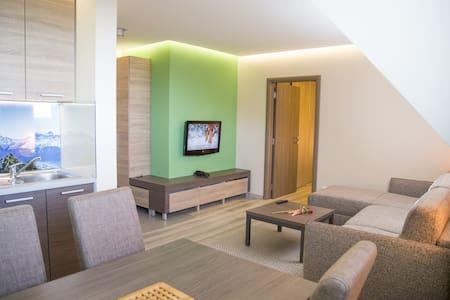 Cozy Apartment in Vila Nikola