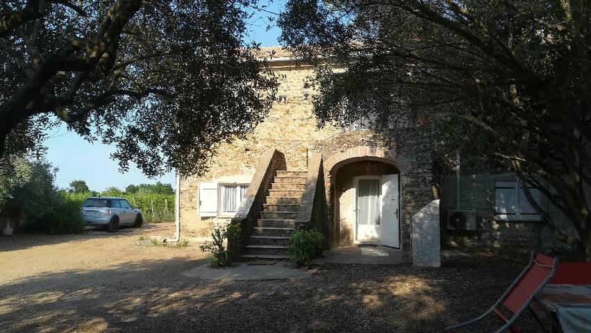 Bas de villa dans les vignes