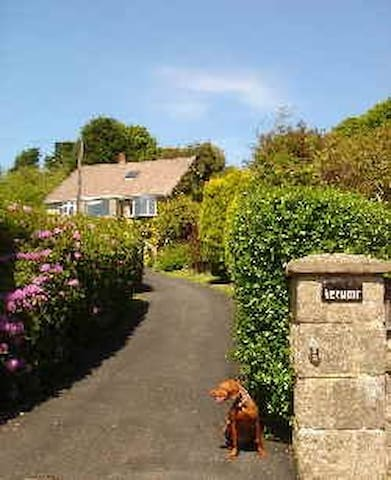 Verwood Bed & Breakfast - Niton