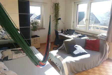 room in a shared flat - Zürich - Wohnung