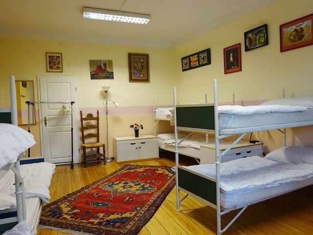 beautiful room in town villa auberges de jeunesse. Black Bedroom Furniture Sets. Home Design Ideas