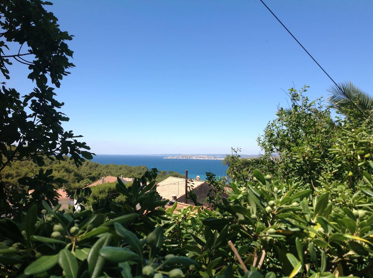 Sur la colline de Marseilleveyre, face à la rade de Marseille
