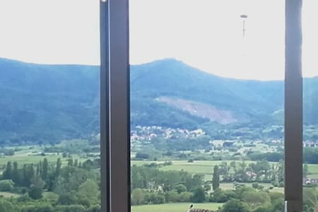 nid de rêve - Obernai