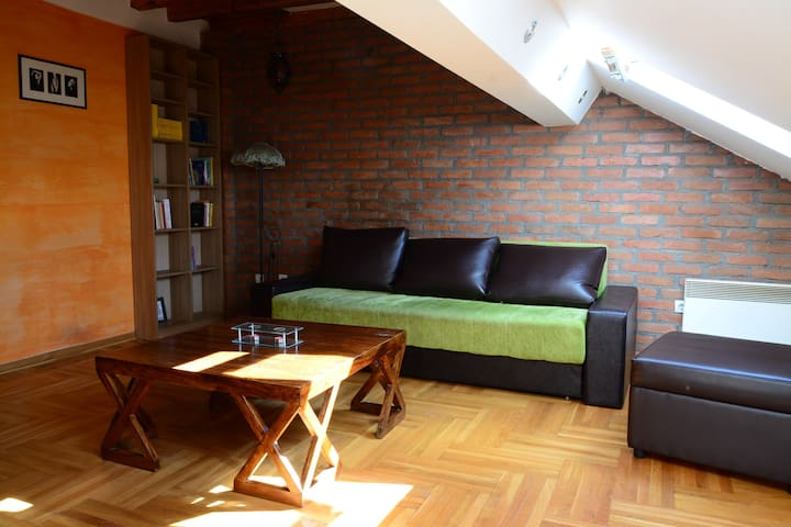 Spacious apartment with gallery in the old town