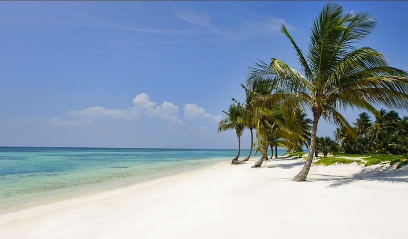 Beach and Golf apartment Punta Cana Beach Resort