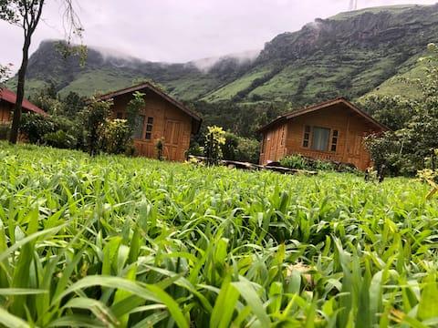 Manikyadhara Homestay cottage 1