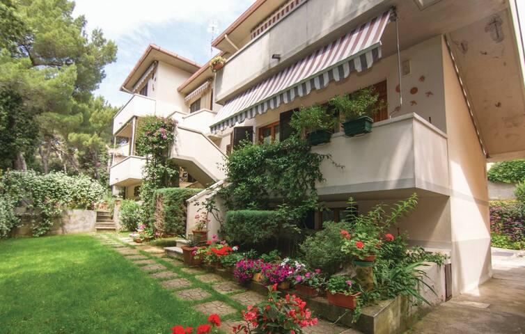 Casa Lavanda .. appartamento a Castiglioncello....