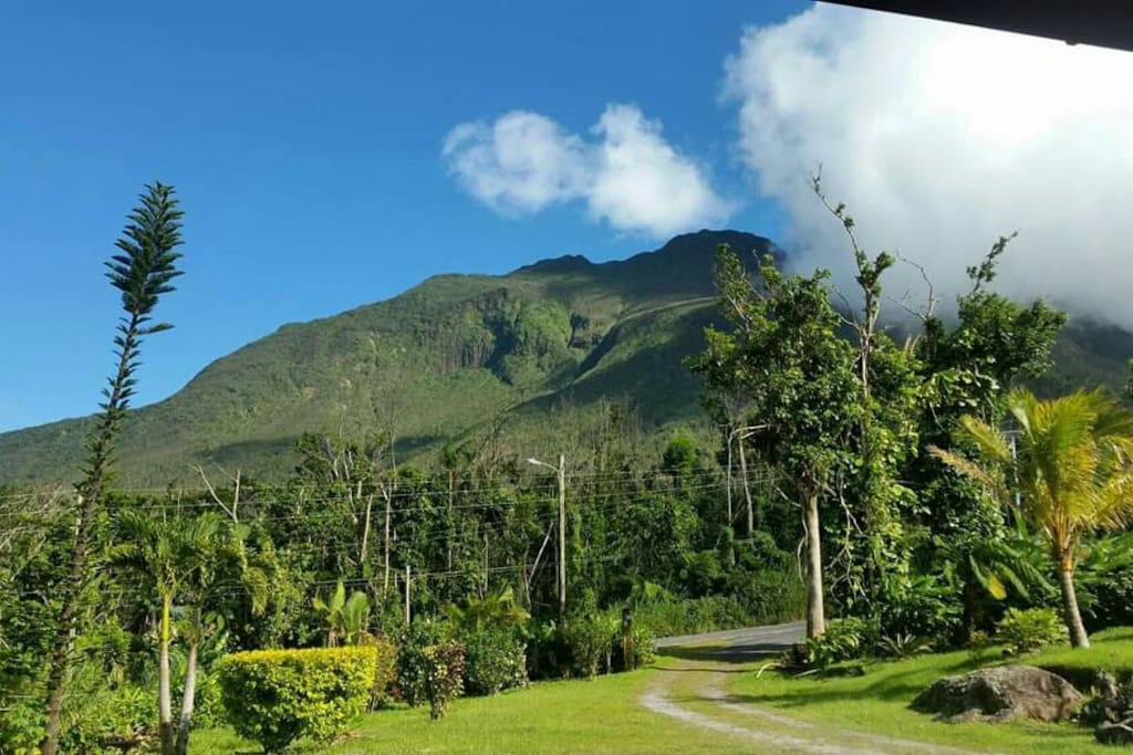 Misty Lodge with a view of Morne Trois Piton mountain