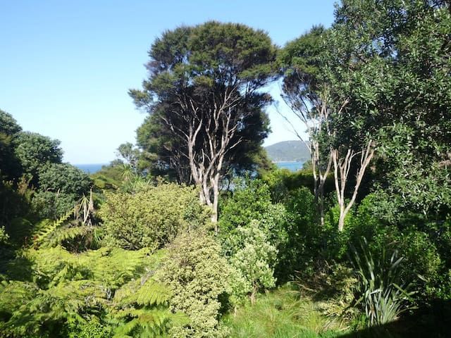 GBI Central: Cosy home with bush and beach beyond - Great Barrier Island - Hus