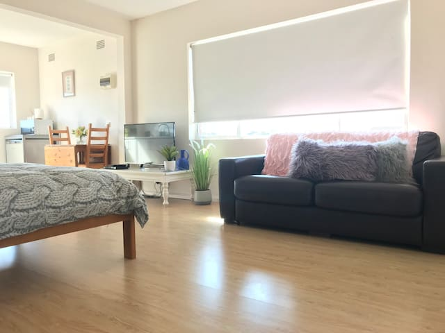 This studio has a double sofa bed and can accommodate 2 young kids in addition to 4 adults.