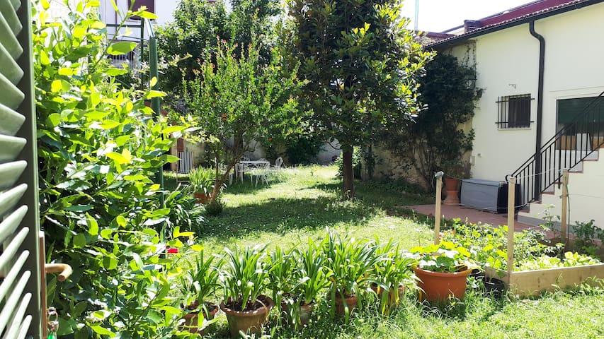 Il giardino di Tulip - Toscana meravigliosa