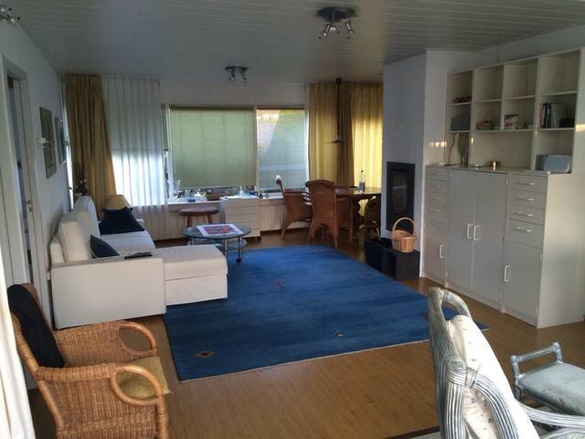 Wohnraum mit Schlafsofa und Esstisch