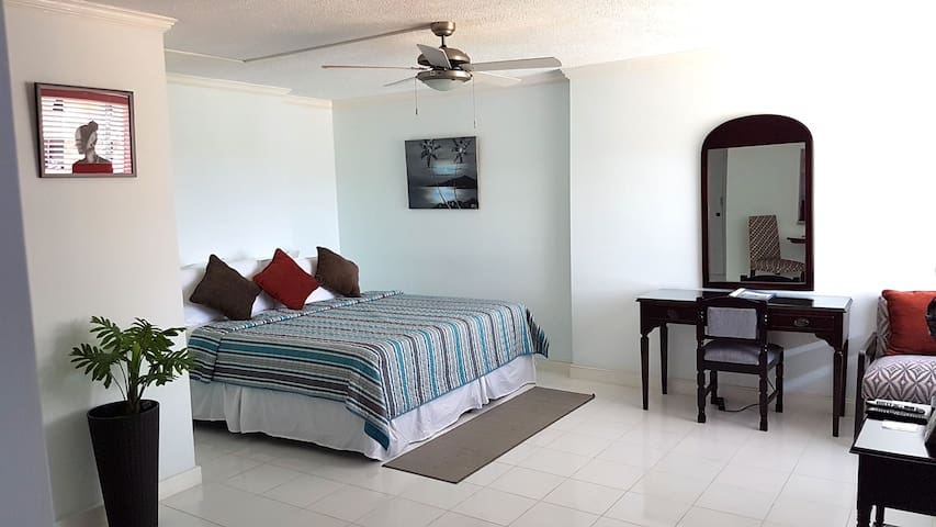 Spacious Ocho Rios Beach Apt with A/C, Cable& WiFi