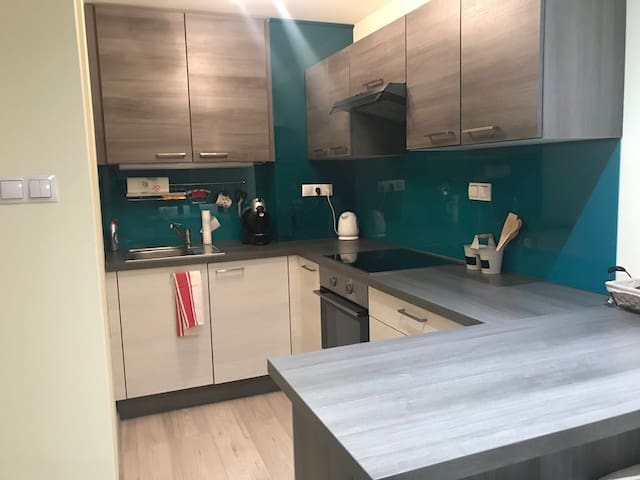 1 bedroom flat whith kitchen/living room