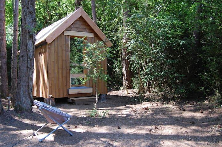 La Cahute, cabane dans les bois - La Vacquerie-et-Saint-Martin-de-Castries - Srub