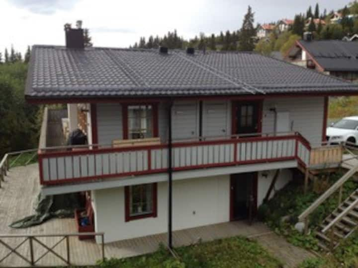 Apartment 100 m from chairlift/skibus