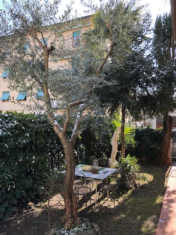 Casa dell ulivo