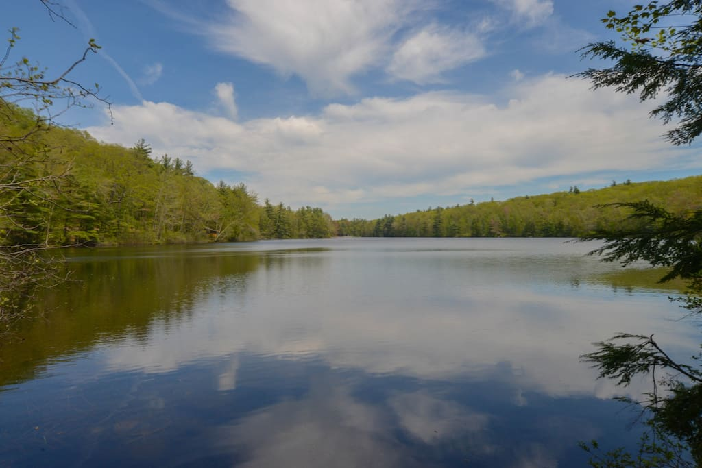 Pristine Sandy Pond is a short walk down a dirt road. Perfect for a swim on a summer afternoon.