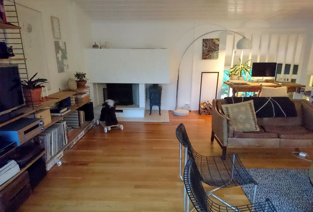Fireplace, desk, TV, record player.
