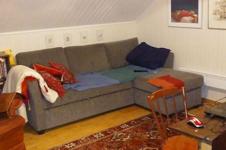 Nice private room and a dedicated bathroom + wifi - Helsinki