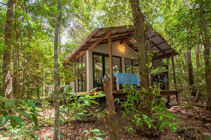 Private rainforest cottage within reach of beaches