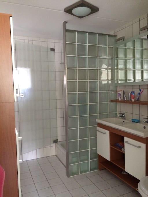 冲淋房和卫生间,一楼还有一卫生间