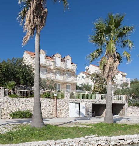Apartment Jadranko (50121-A1) - Slano (Dubrovnik) - Apartment