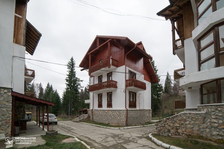 Spacious apartment in villa in Poiana Brasov