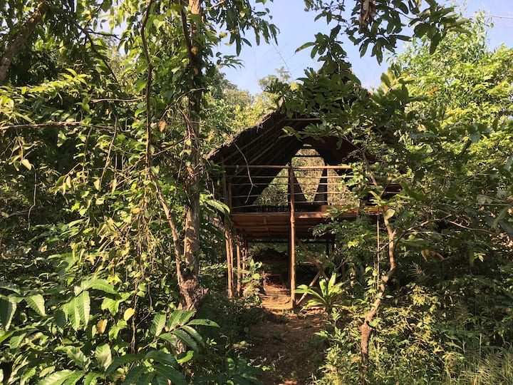 Jungle Hut close to Agonda Beach