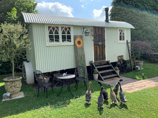 The Tin Hut With Hot Tub Availability