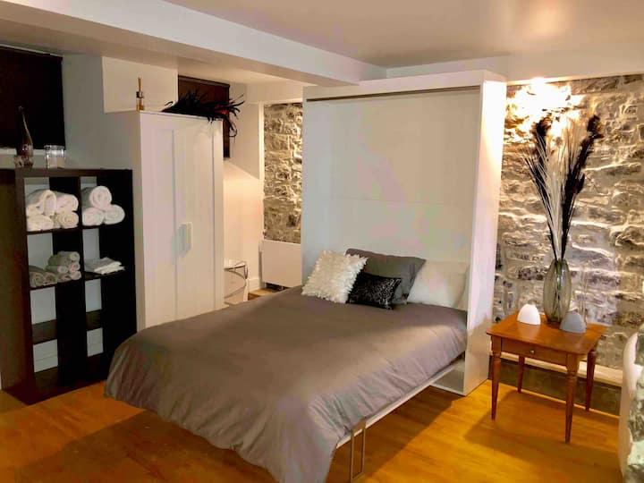 Superbe Loft Avec Tranquilité ( Vieux Québec )