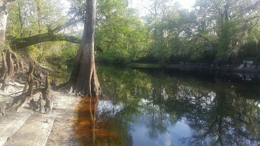 Amazing Withlacoochee Forest and river campsites!! - Webster - Teltta