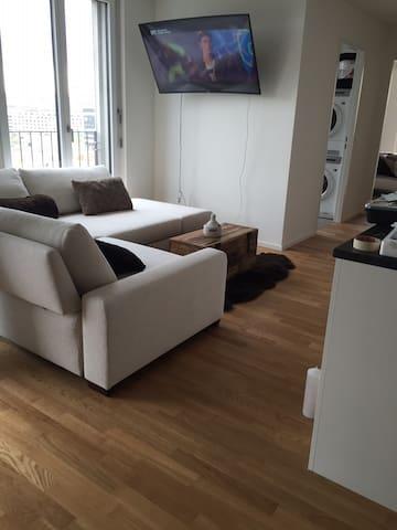 New Apartment, 10min walk to fair! - Basel - Apartemen