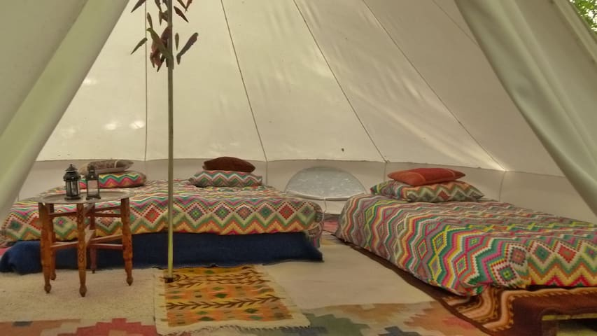 Spacious bell-tent in forest, awesome interior