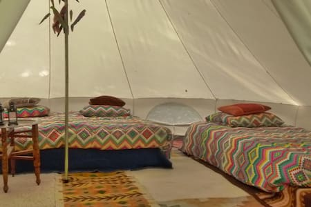 Spacious bell-tent in forest, awesome interior - Groningen