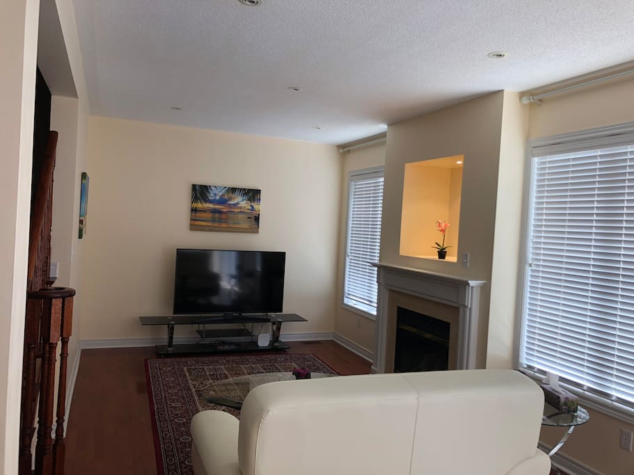 TV and Fireplace Area 1