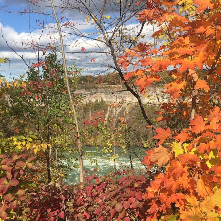 **New Listing** Serene Niagara Gorge views
